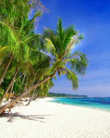 Beach and Island Escapes